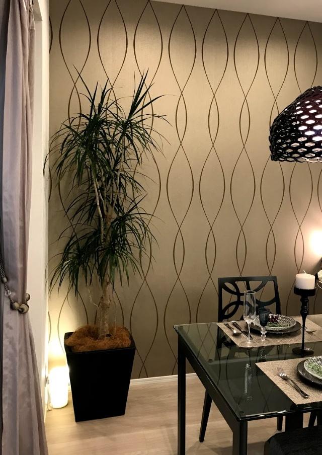 おしゃれな植物の飾り方3選