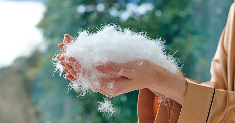 羽毛布団の清浄度とは